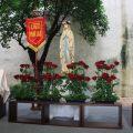 2019年5月31日聖母加冕祈禱禮